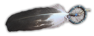 Adlerfeder